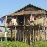 Bamboo Stilted House